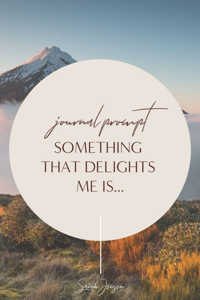 Journal prompt - Something that delights me is...