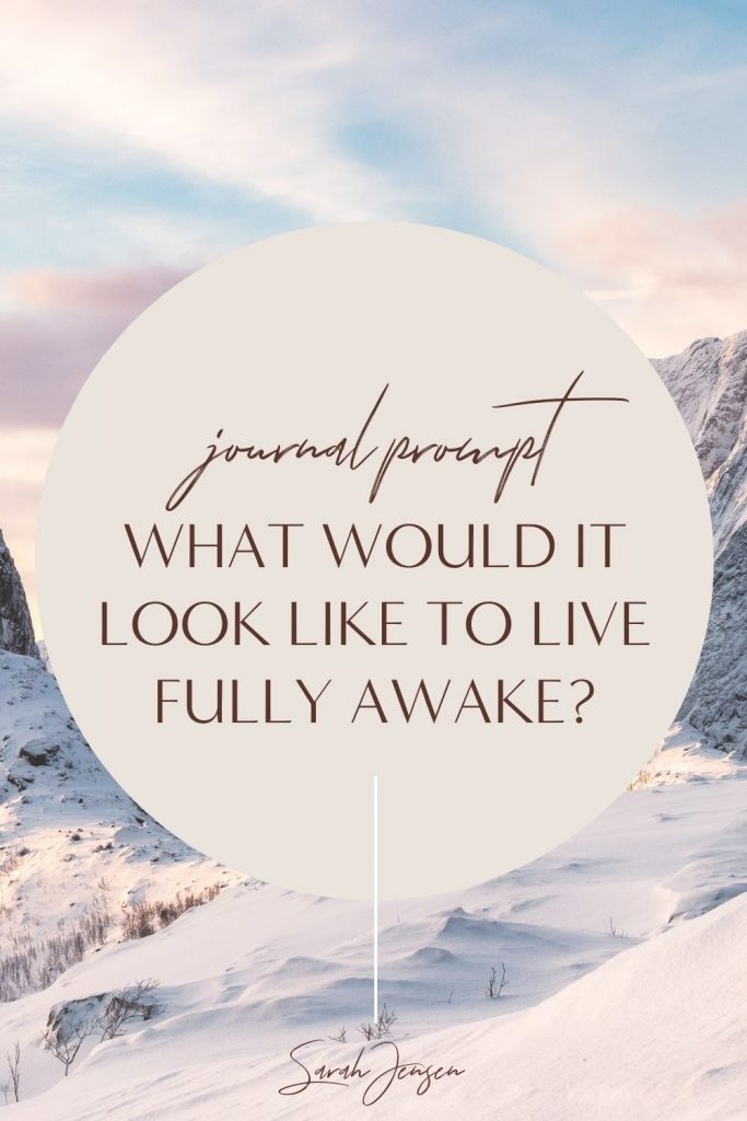 Journal prompt - What would it look like to live fully awake?